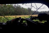 View of the soybean field from an archery blind.