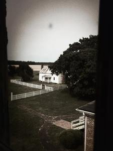 View of slave quarters from upstairs window.
