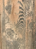 Grain of the long-leaf pine used for the woodwork.
